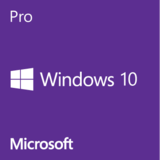 Windows 10 Pro - licencia OEM Inglés - 0885370920925